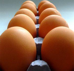 Alimentación: ¿Verdadero o Falso?